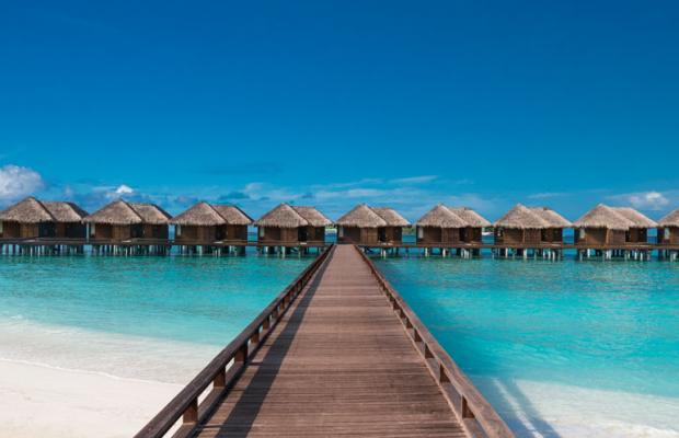 фотографии Sheraton Maldives Full Moon Resort & Spa изображение №48