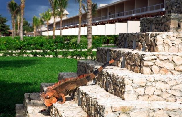 фото отеля Presidente InterContinental Cozumel Resort & Spa изображение №5