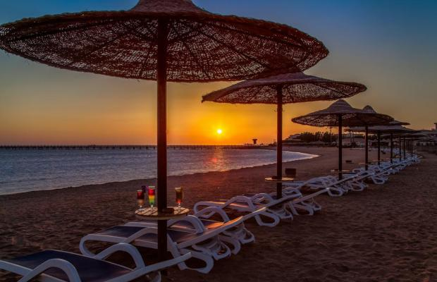фотографии отеля Cleopatra Luxury Resort Makadi Bay (ex. Aldiana Makadi) изображение №27