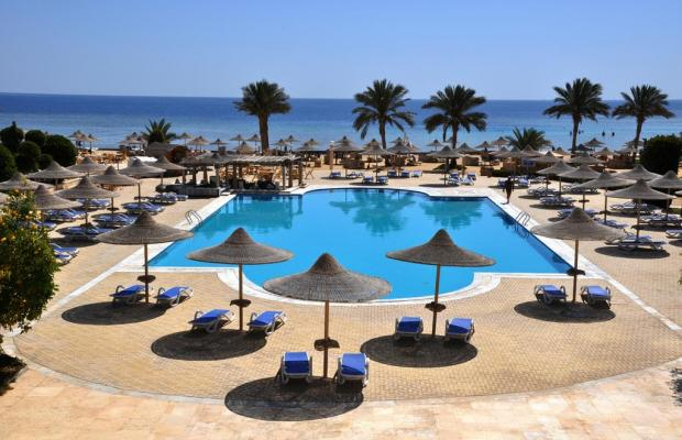 фотографии Paradise Club Shoni Bay Resort (ex. Royal Resort Marsa Alam) изображение №12