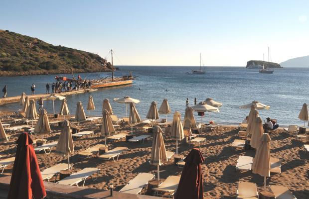 фотографии отеля Aegeon Beach изображение №3