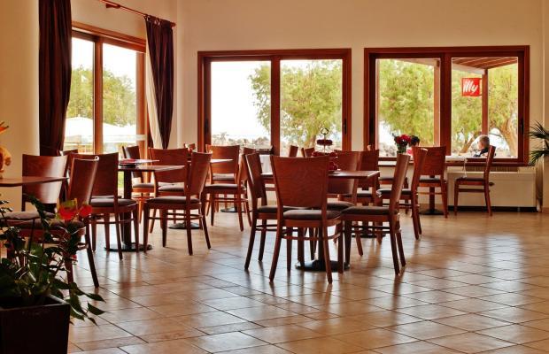 фотографии Aphrodite Beach Hotel изображение №8