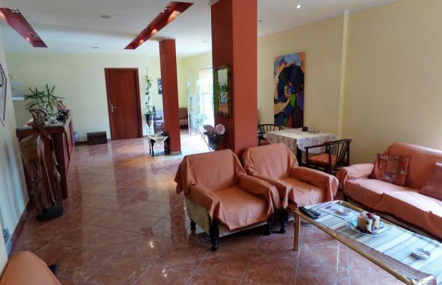 фотографии отеля Dolphins Apartments & Rooms изображение №15