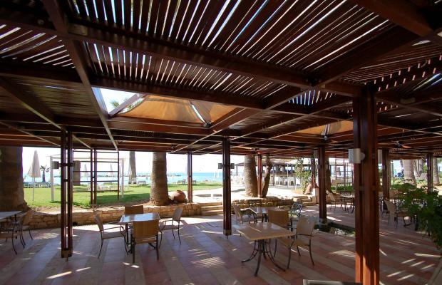 фотографии отеля Palm Beach Hotel & Bungalows изображение №3