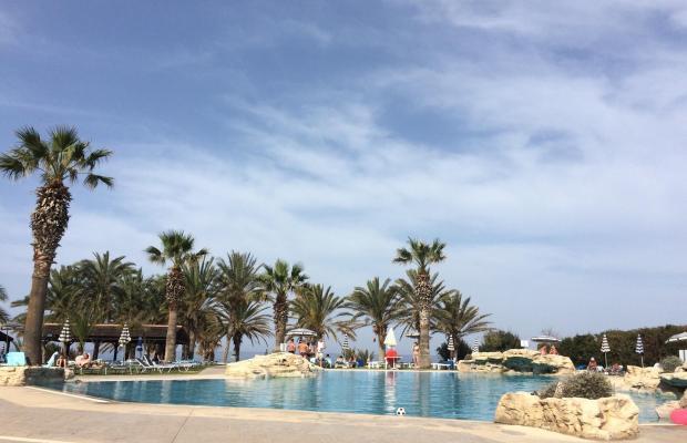 фотографии Venus Beach Hotel изображение №4