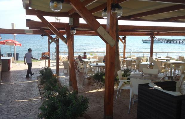 фотографии отеля Evalena Beach Hotel Apartments изображение №15