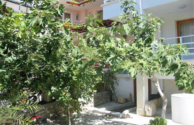 фото Villa Vanya (Вилла Ваня) изображение №2