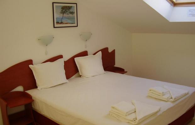 фото отеля Алпина (Alpina) изображение №13