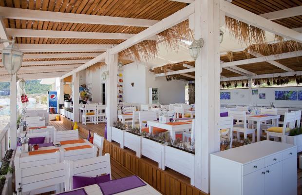 фотографии отеля Green Life Beach Resort изображение №3