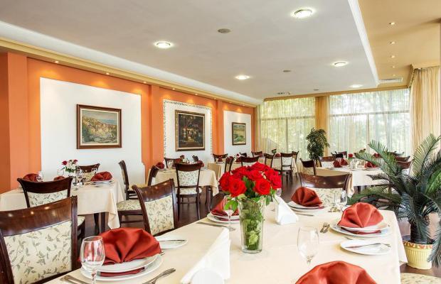 фотографии отеля Bankya Palace Spa Hotel изображение №7