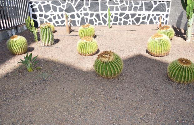фотографии отеля Los Cactus изображение №11