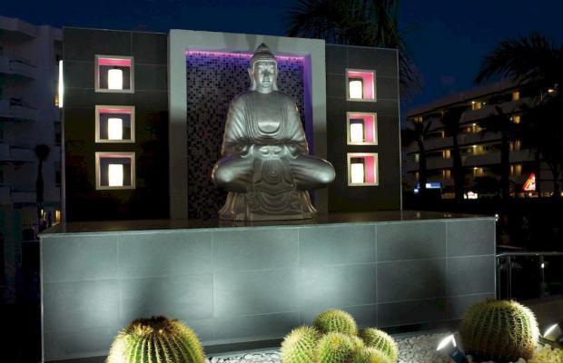 фотографии отеля Hotel Riu Don Miguel изображение №19