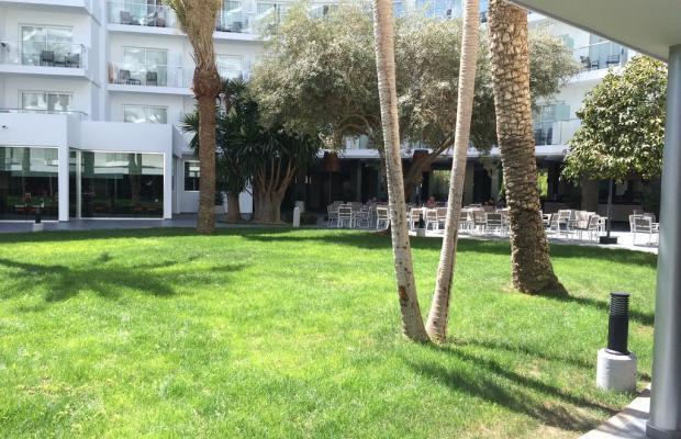 фотографии ClubHotel Riu Papayas (ex. Riu Flamingo) изображение №8
