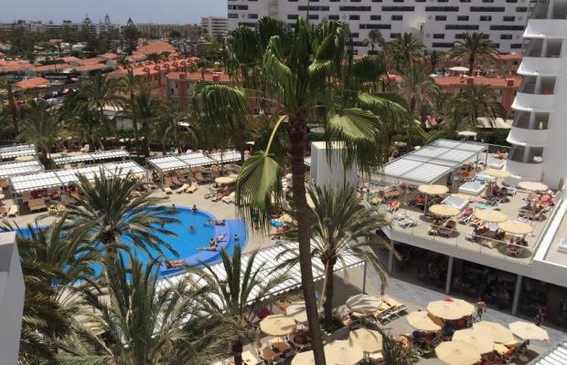 фотографии отеля ClubHotel Riu Papayas (ex. Riu Flamingo) изображение №3