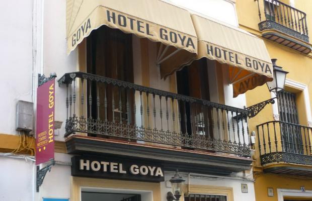 фото Goya изображение №2