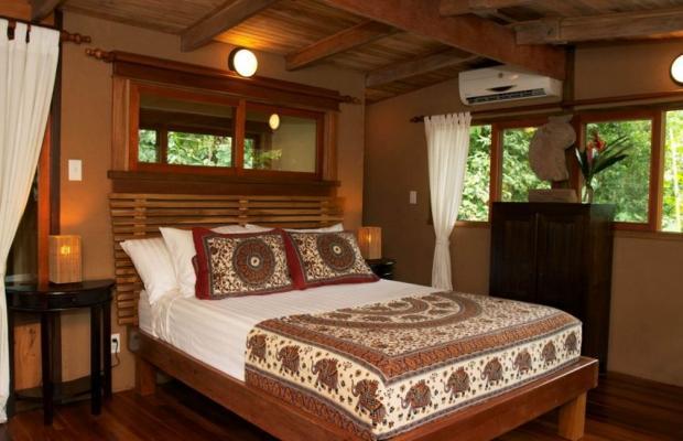 фотографии Copa De Arbol Beach & Rainforest Resort изображение №28