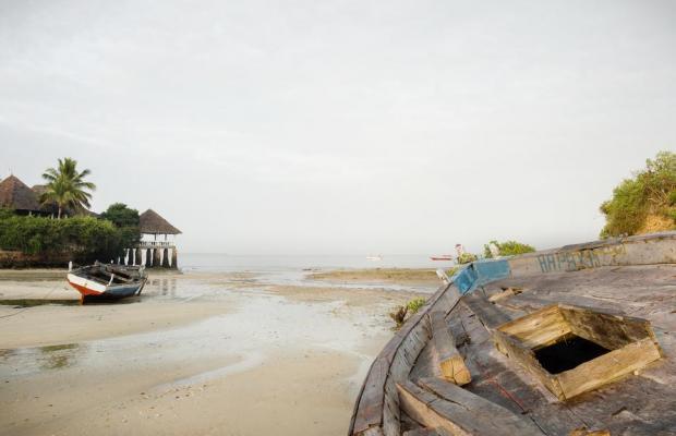 фото отеля Chuini Zanzibar Beach Lodge изображение №25