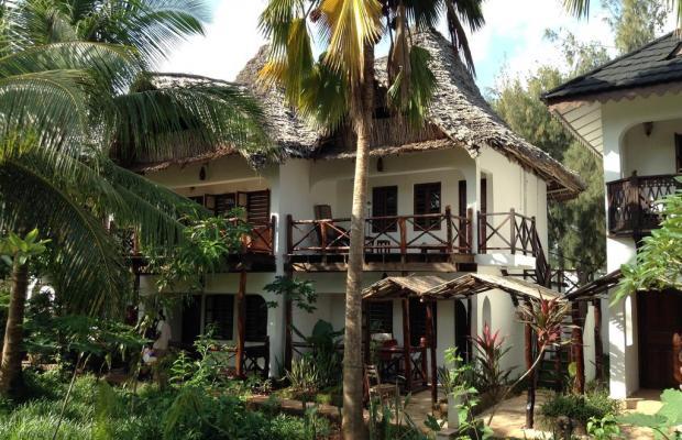 фотографии отеля Langi Langi Beach Bungalows изображение №31