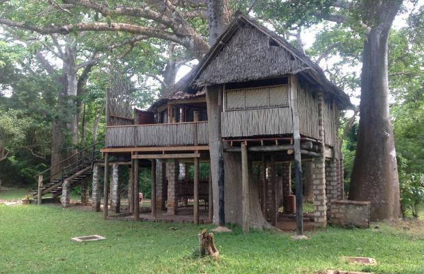 фотографии отеля The Cove Treehouses (ex. The Cove Retreat) изображение №15