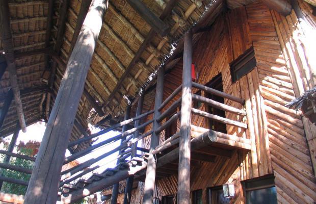 фото отеля Mara Simba Lodge изображение №5