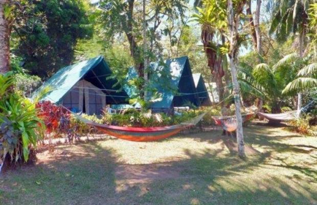 фотографии Corcovado Adventures Tent Camp изображение №20