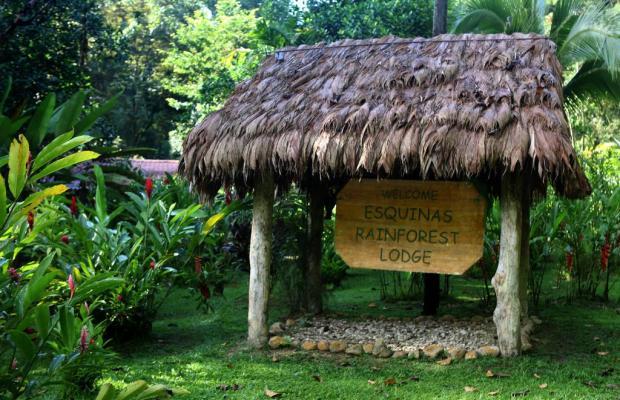 фотографии отеля Esquinas Rainforest Lodge изображение №31