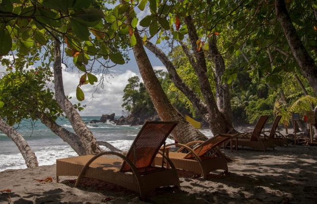 фотографии отеля Arenas del Mar Beachfront & Rainforest Resort изображение №39