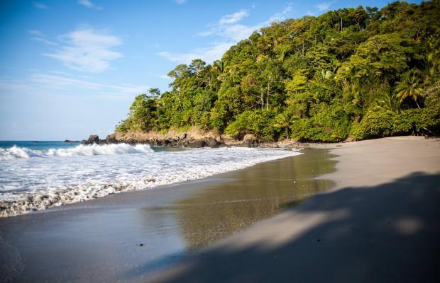фотографии Arenas del Mar Beachfront & Rainforest Resort изображение №24