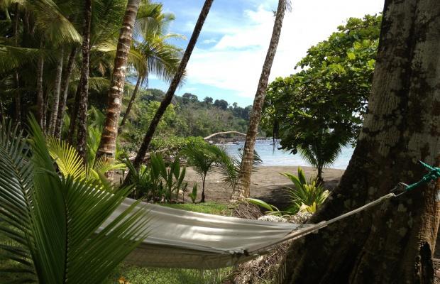 фото отеля Casa Corcovado Jungle Lodge изображение №89