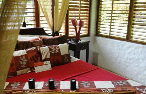 фотографии Casa Corcovado Jungle Lodge изображение №40
