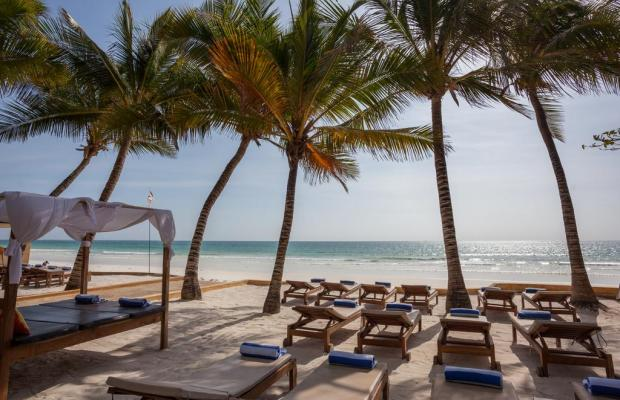 фотографии Blue Marlin Beach изображение №16
