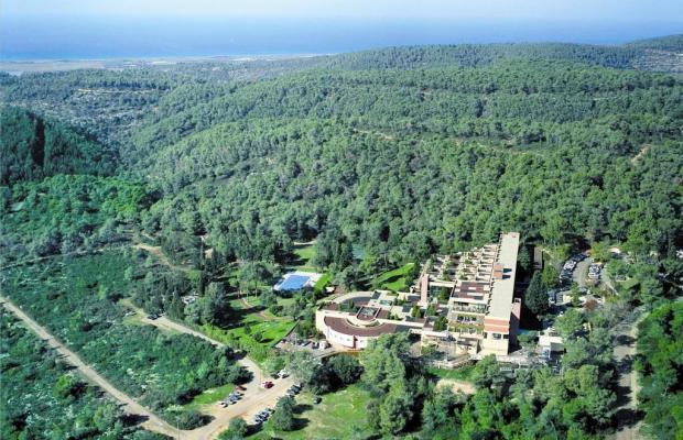 фотографии отеля Carmel Forest Spa Resort by Isrotel Exclusive Collection изображение №23