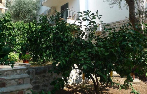 фото Apartments Maslina изображение №10