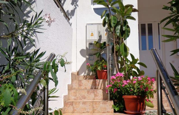 фотографии отеля Apartments Milica изображение №15
