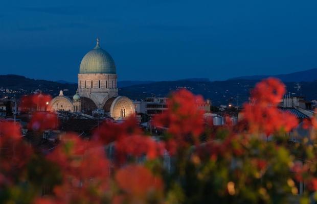 фото Cardinal of Florence изображение №38
