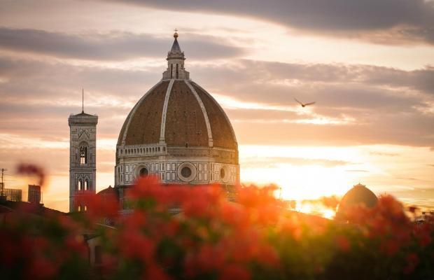 фотографии Cardinal of Florence изображение №20