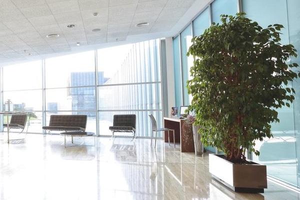 фотографии отеля Husa Abad San Antonio изображение №19