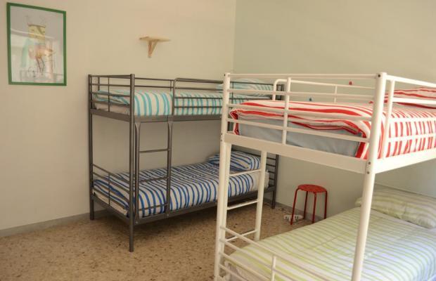фотографии отеля Olive Tree Hostel изображение №7