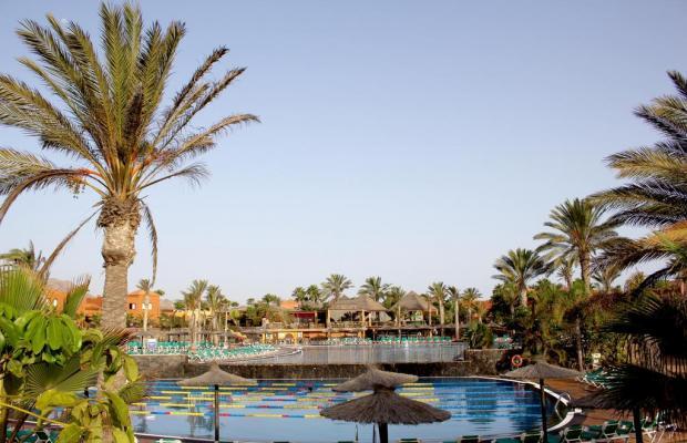 фотографии Oasis Papagayo Sport & Family Resort изображение №16