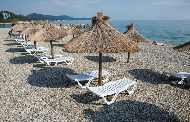 фотографии Черноморье изображение №8