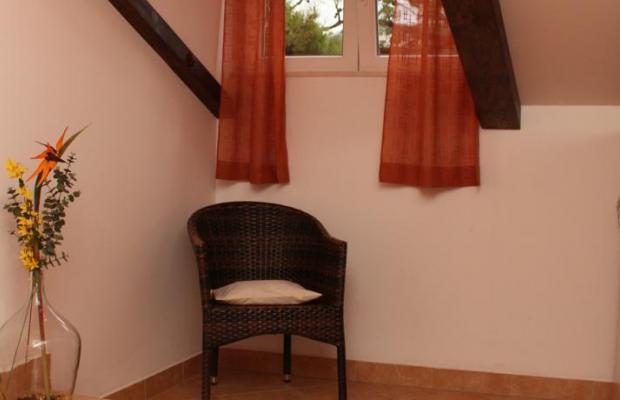 фото отеля Villa Ada изображение №13