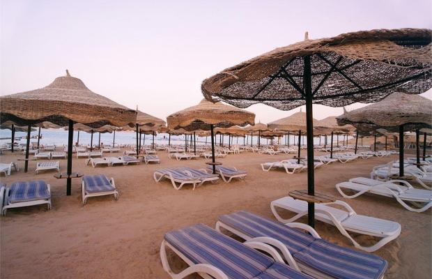 фотографии Aurora Sharm Resort (ex. Crystal Sharm; Sol Sharm; Sharm Ras Nasrani Bay) изображение №12