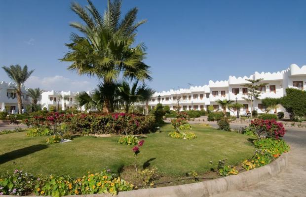 фотографии отеля Swiss Inn Resort Dahab (ex. Swiss Inn Golden Beach Dahab) изображение №3