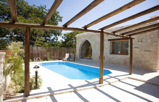 фотографии отеля Villa Violaris изображение №15