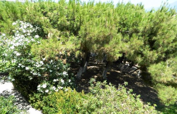 фотографии отеля Glicorisa Beach изображение №59