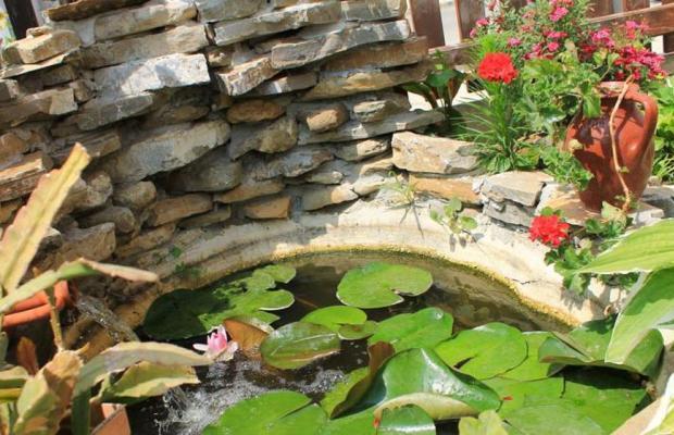 фотографии Guest House Bordo изображение №8
