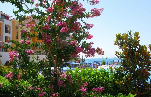фото Marina Cape изображение №10