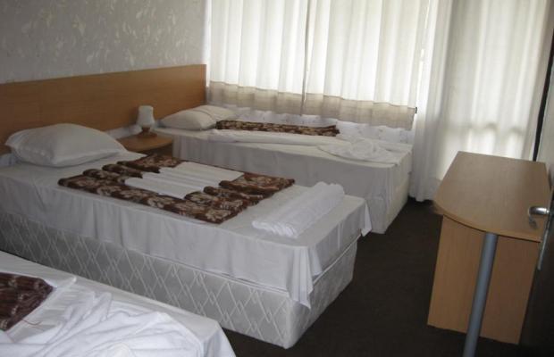 фотографии отеля Альбатрос (Albatross) изображение №3