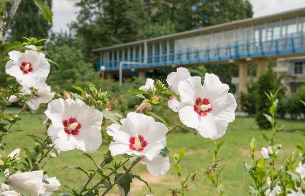 фото отеля Анапа (Anapa) изображение №9