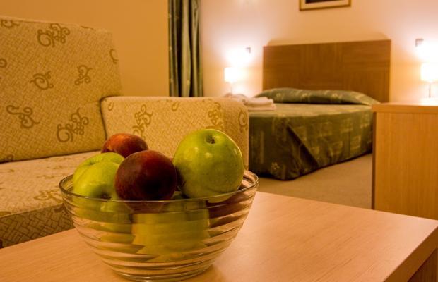 фото отеля Vitosha Park (Витоша Парк) изображение №65